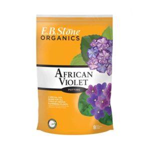 AfricanViolet