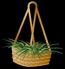 hanging basket icon