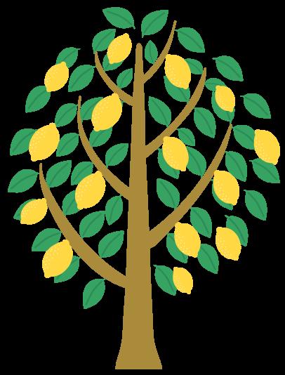 citrus tree icon