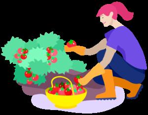 Farming and garden job